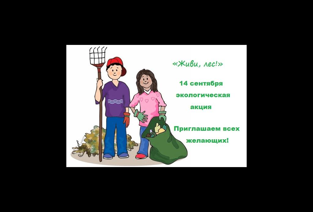 ЗАВТРА В ДЮРТЮЛИНСКОМ РАЙОНЕ ПРОЙДЕТ ЭКОЛОГИЧЕСКАЯ АКЦИЯ «ЖИВИ, ЛЕС!»